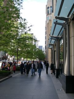 shoppers on Michigan Avenue